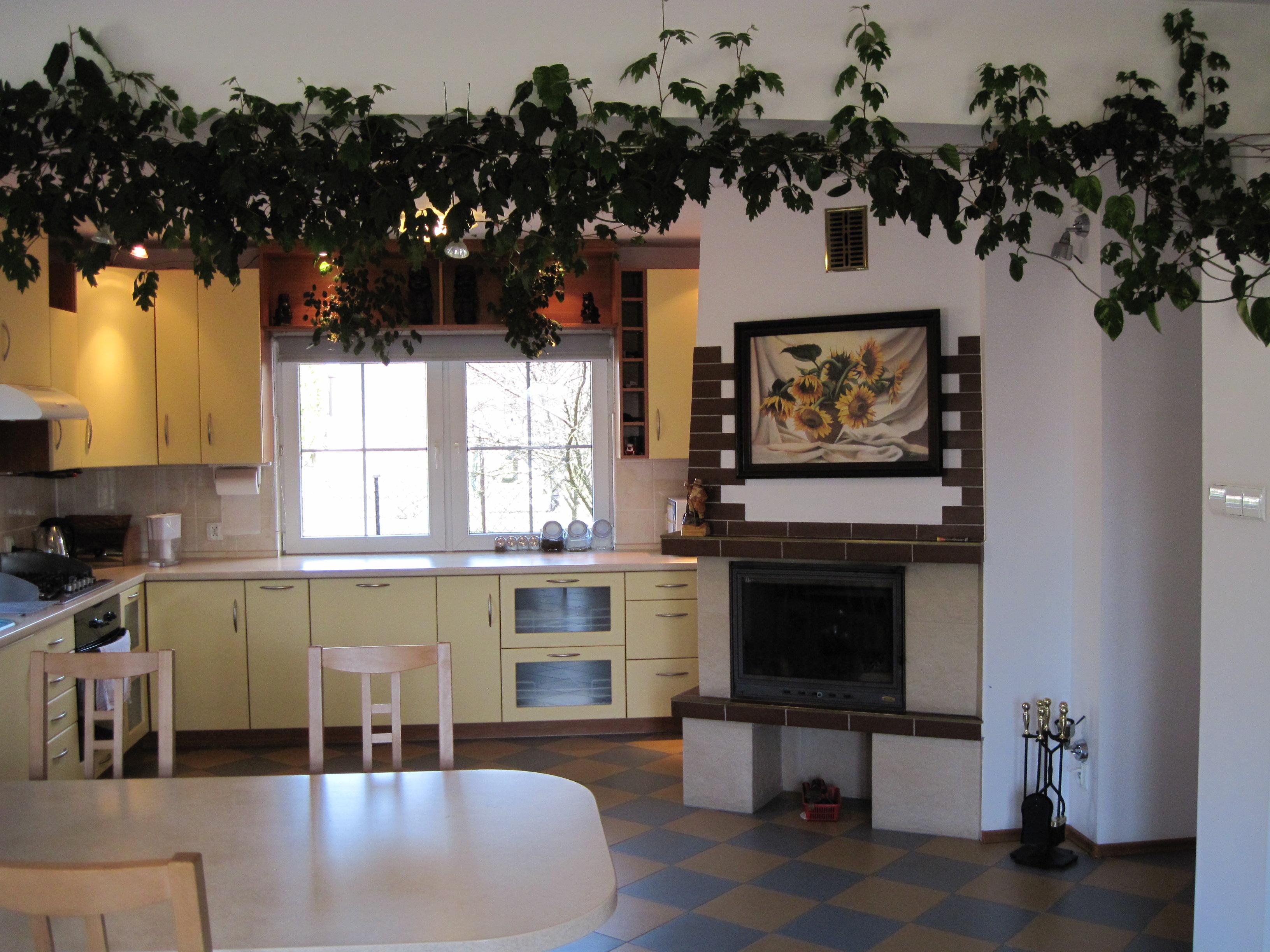 aranżacje kuchni małej łódź, meble kuchenne pod zabudowe, meble kuchenne projekt -> Kuchnia Pod Zabudowe Projekt